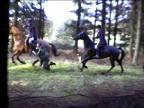The huntsman lets go so that Simon falls to the floor in front of the Whipper-in's horse