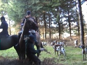 Broise rides another hunt sab down